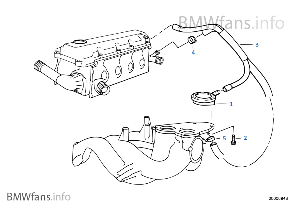 Bmw Wiring Diagrams Download additionally 320parts likewise Cooling System Water Hoses 2 likewise Engine block mounting parts further E46 M3 Abs Wiring Diagram. on bmw 318i engine diagram