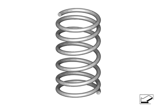 Front coil spring
