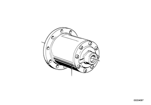 Differential-limited slip diff.unit