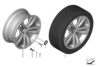 """BMW LM Rad Doppelspeiche 316 — 20"""""""
