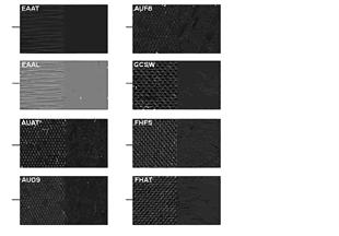 Echantillons de sellerie cuir/tissu
