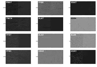Página muestras colores acolch. tela