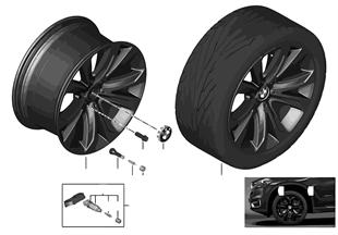 BMW 輕質鋁合金輪輞 星形輪輻 491 - 20''