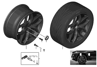 BMW 輕質合金輪輞 雙輪輻 215
