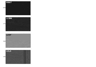 Str. z wz. kolorów tapic. M Sportpaket