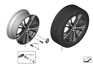BMW LA wheel Star Spoke 660 — 20''