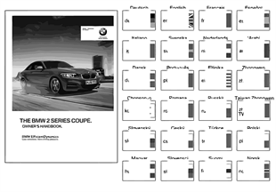 Рук.по эксплуатации F22 без iDrive