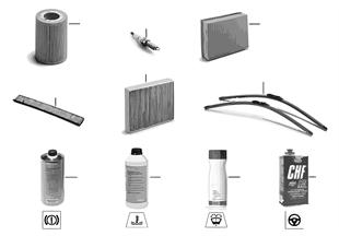 Service olio motore / Ispezione